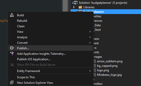 Publish option in Visual Studio 2013
